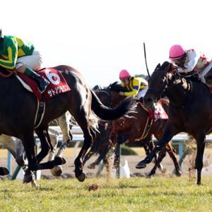 【京都記念2020予想】今週の競馬