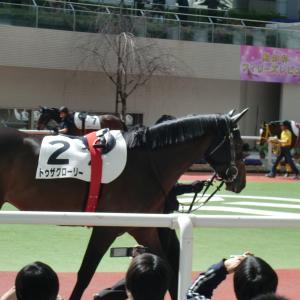 トゥザグローリーと出会った日 in阪神競馬 2010年3月14日(日)