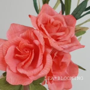 (P♡F)秋色なバラ