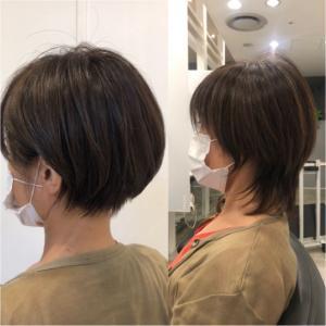 《第1476回》バッサリ秋髪に✂︎