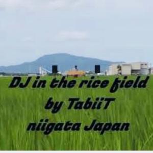 田んぼDJドローン空撮   日本の夏景色「緑の絨毯」【 TabiiT タビート/ 新潟 音楽 イベント 野外DJ 】
