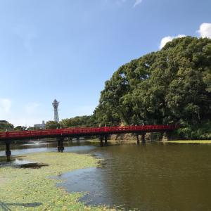 【天王寺公園】てんしばでのんびりランチ