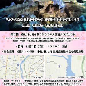 相模川サクラマス幼魚放流イベント開催のお知らせ