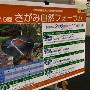 第19回さがみ自然フォーラムで相模川サクラマスセッション