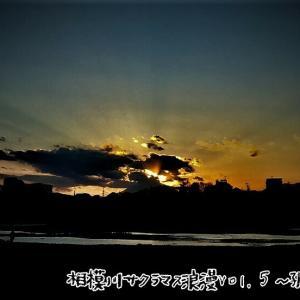相模川サクラマス浪漫Vol.5~孤独