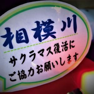 キャスティング湘南平塚店様の募金箱設置の御礼