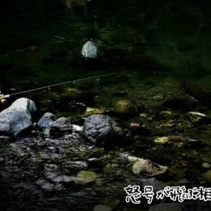 JINとゆく鮎沢川スパルタガイド