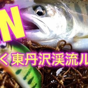 JINとゆく東丹沢渓流ルアー