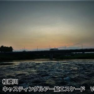相模川ルアー鮎・キャスティング鮎エスケードVol.2