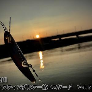 相模川ルアー鮎・キャスティング鮎エスケード Vol.3
