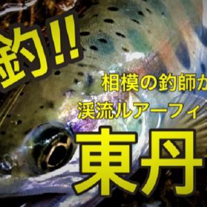 爆釣!東丹沢渓流ルアー