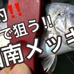 TOPルアー湘南メッキゲーム爆釣!