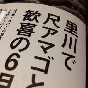 【最新号】鱒の森№60~里川で尺アマゴ