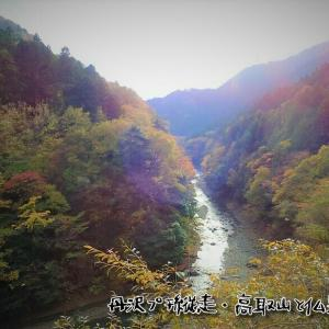 丹沢プチ縦走・高取山と仏果山