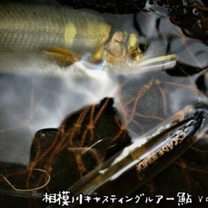 相模川キャスティングルアー鮎Vol.3~相模SPチューン2降臨
