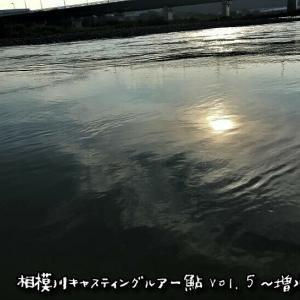 【増水濁り】相模川キャスティングルアー鮎 Vol.5