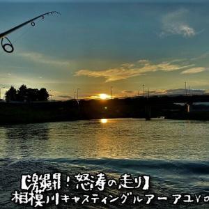 【激闘!怒涛の走り】相模川キャスティングルアー鮎Vol.9