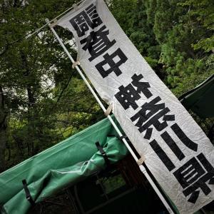 東丹沢渓畔林魚類調査