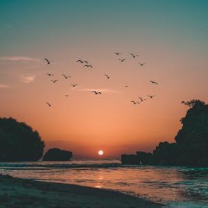 沖縄本島やんばる宜野座村の夜明け