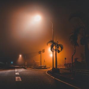 夜霧だよ。珍しや沖縄で放射冷却。