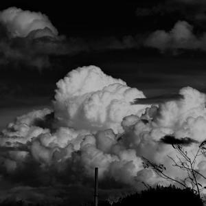 「雲~モノクロ~」の巻