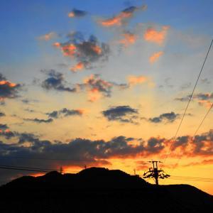 「いつぞやの夕陽と雑草」の巻