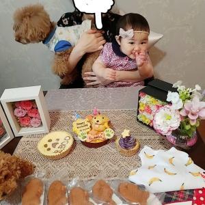 ワンコの5歳の誕生日会