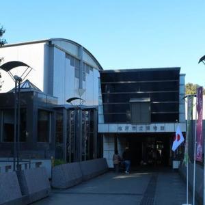 Matsudo Museum 松戸市立博物館
