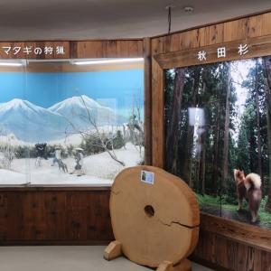 Akita (breed of dog) museum、秋田犬博物室
