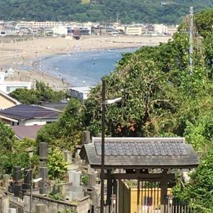 鎌倉散歩🚶♀️🚶♀️〜小町通り編