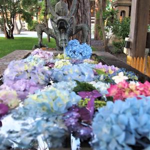 西野神社の手水花