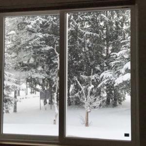 雪が静かにふっています。