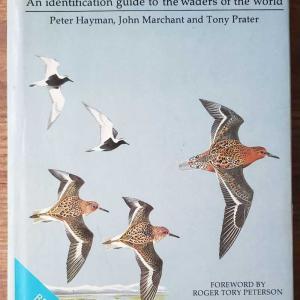 鳥の本(SHOREBIRDS)