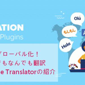 ブログを英語に!使い方も簡単プラグインGoogle Language Translator(WordPress)