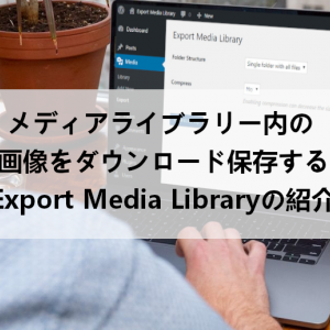 メディアライブラリ内をダウンロードする「Export Media Library」の使い方