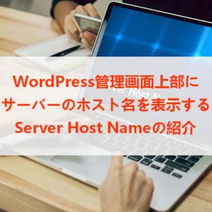 WP管理画面にサーバーのホスト名を表示「Server Host Name」の使い方