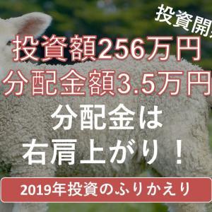 2019年 年間投資額256万円・分配金額3.5万円!大事な一歩目を踏み出しました