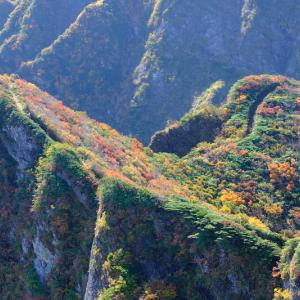 秋彩の錦を纏う浅草岳