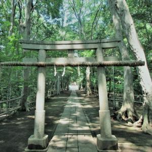 東京世田谷区にある喜多見氷川神社を参拝して転職を成功させた女性の体験談