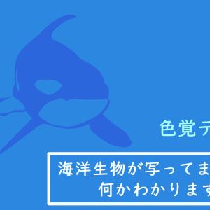 【色覚テスト】海の生き物が写ってます。