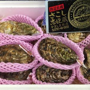 【さこし忠臣蔵の値段は?】兵庫県・牡蠣のお取り寄せ通販や食べた人の口コミ感想
