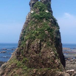 愛しいトトロ岩