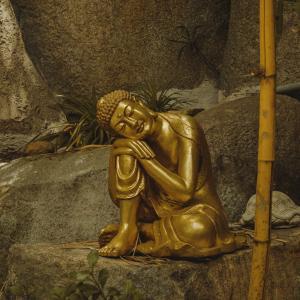 瞑想の弊害