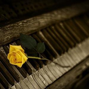 毒母との思い出のピアノを断捨離する。PTSD・トラウマ対応。