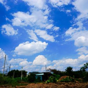 令和カメテク向上倶楽部#16『雲のある風景を広角で』