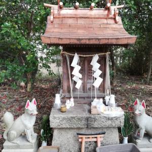 稲荷神社の狐さん!?