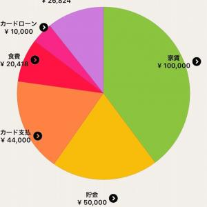 【同棲カップル】フツーのアラサーOLの1カ月の収支