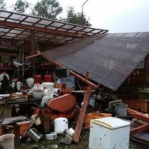 15号台風から4ヶ月