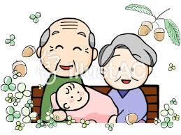 孫に贈る 7月28日午後3時33分誕生 今朝の花たち