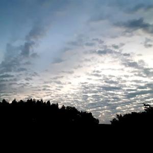今朝の空の様子  いい雲が出ていた